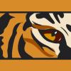 Tiger's Photo